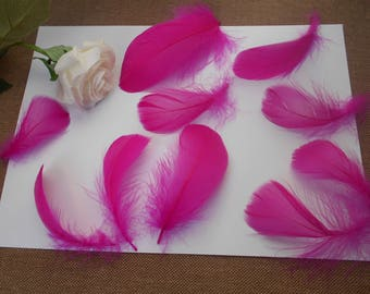 10 feathers - fuchsia d ' about 8cm
