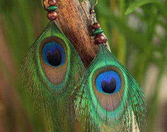 Large Stud Earrings peacock feathers and wooden beads