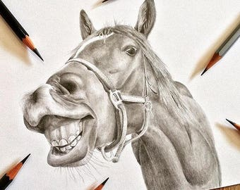 A4 HORSE PENCIL DRAWING - graphite drawing