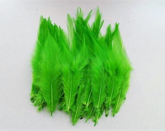 set of 50 feathers green 10-15cm