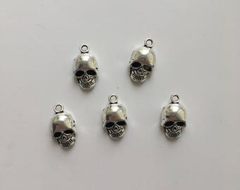 5 Skull Charms