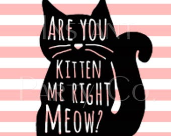 Are you kitten me right meow sign | Cat party sign | Cat birthday signs | kitten birthday sign