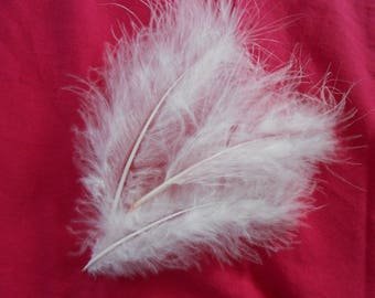 Set of 5 gorgeous pale pink feathers