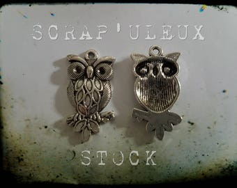 Silver owl, 3x1.6cm, sold individually
