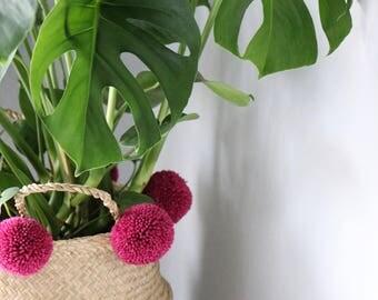 Fait à la main Pom Pom les herbiers ventre panier / Accueil stockage plante Stand / cache-pot / cadeau / cadeau