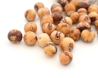 10 natural off white round beads in 6-10mm Acai seeds