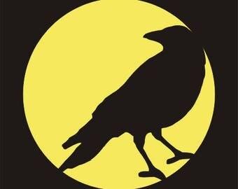 193 Crow
