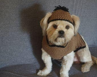 dog crochet outfit.