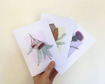 Three pack of watercolour illustration art print card. Australian native, blank greeting, birthday, thank you card.