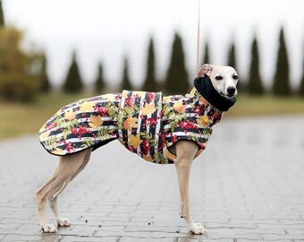 Whippet Coat, SOFTSHELL, Winter Coat for Dogs, Waterproof  Coat, Raincoat,  Fleece Dog Snood, , Dog Clothing, Dog Clothes