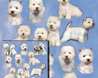 West Highland White Terrier Dog, Westie Gift Wrapping Paper with matching Gift Card.