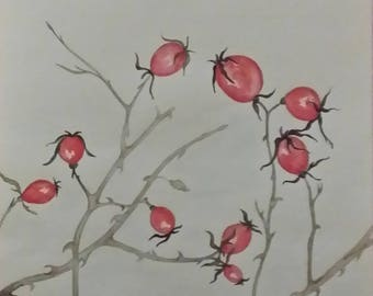 Rose hips in the snow