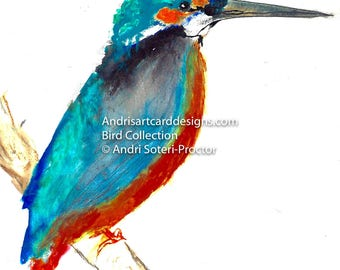 Kingfisher - Bird Collection Ref: BC001_KF