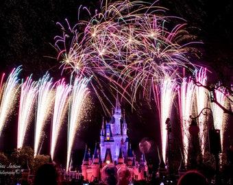 Disney World Castle Wishes Fireworks