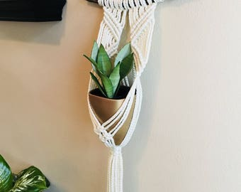 Macrame Plant Hanger with Pot