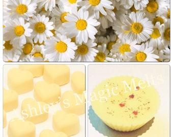 3 daisy perfume soy wax melts, designer wax melts, strong wax melts, best wax melts, wax tart melts
