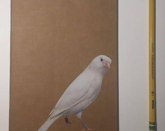 Collage Notebook- White Bird