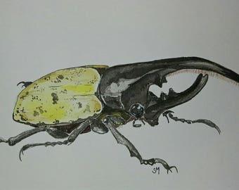 Rhinoceros Beetle original watercolor