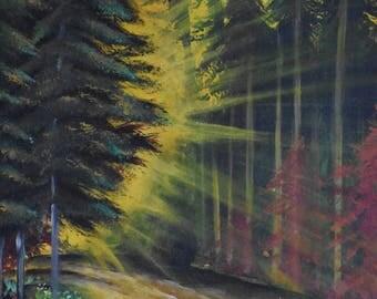 Sunlight and the Path /Original Handmade Canvas Painting/ 16 X 20