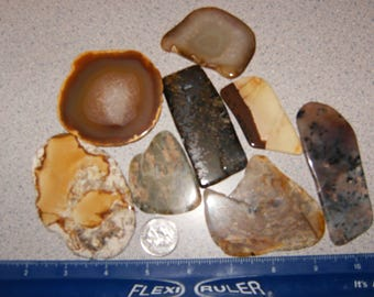 8 different tumbler polished lapidary rock slabs !