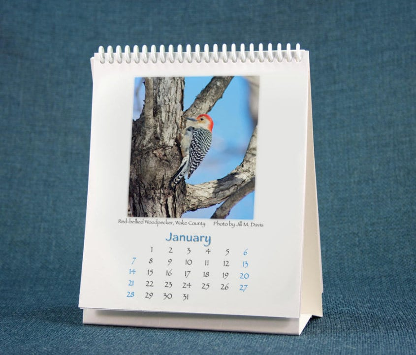 January calendar page, featuring Red-Bellied Woodpecker