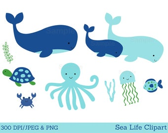 Cute Whale Clipart / Under The Sea Clipart / Whale Baby Shower / Nautical Baby Shower / Under The Sea / PERSONAL USE Instant Download A179