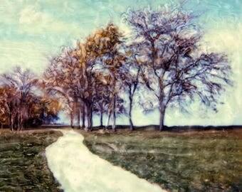 Lakefront Path - Polaroid SX-70 Manipulation - 8x8 Fine Art Photograph, Wall Decor