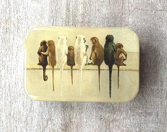 Monkey tin LARGE, Notions tin