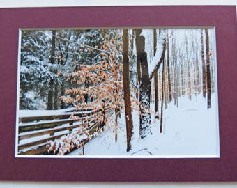 Matted 4x6 Winter Woodland Fine Art Photography Rustic  Nature Print Home Decor Small Wall Art Snow Scene