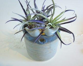 Yarn bowl, Knitting yarn holder, dusty blue yarn bowl, succulent planter, Ceramic yarn bowl, ceramic bird planter