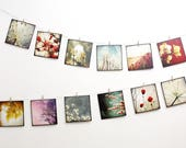 Set of twelve cards postcards art 14 x 14 - set Nature 02