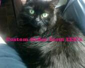Pawtter cat
