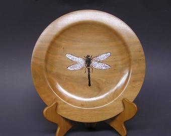 Dragon fly platter