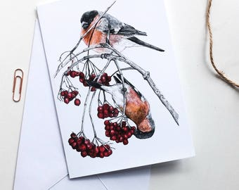 Blank Card - Bullfinches & Red Berries
