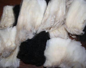 Bag O' Wool Locks