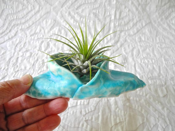 Planter, Air Plant Holder, Air Plant planter, tiny planter, Turquoise planter, organic shape, hobbit planter, ring bowl, salt bowl,