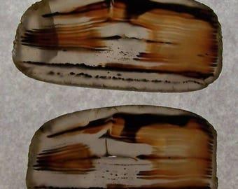 Montana Agate slabs-MT-6