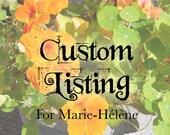 Custom Listing for Marie-Hélène / Balance of 50% on Final Painting