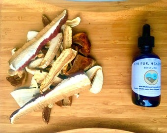 Herbal Tinctures, Wild mushroom immunity tonic, reishi, artist's conk, turkey tails, birch polypores, foraged, wood mushroom, dried mushroom