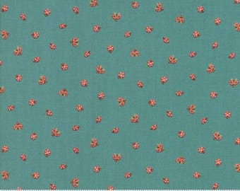 Lucky Day by Momo for Moda - Ladybugs - Turquoise Pond - 1/2 Yard Cotton Quilt Fabric 817