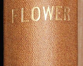 vintage Harriet Beecher  stowe the May  flower london milner and sowerby ca.1862
