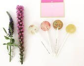 Build Your Own Gift Box // 20 Lollipops // Mix and Match up to 4 Flavors // Say Thank You // Fall Weddings // Spring Wedding Favor