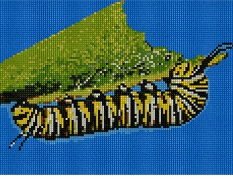 Needlepoint Kit or Canvas: Caterpillar