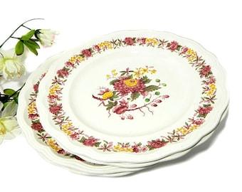Four Copeland Spode Regency Dinner Plates England