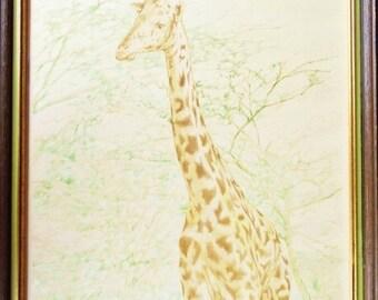 ON SALE Vintage 1980's Giraffe Lithograph Print Signed by Artist Robert Stevens, Titled Tall One 32/300, Framed