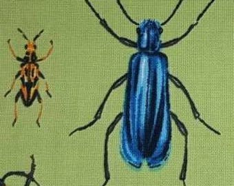 100% cotton Quilting fabric by the 1/2 yard of wounderful bugs, insects, beetles.  Just wounderful  fun fabric.  Camp shirt?  Entomology
