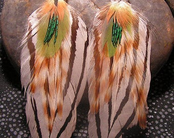 Silver Pheasant and Parrot Feather Earrings