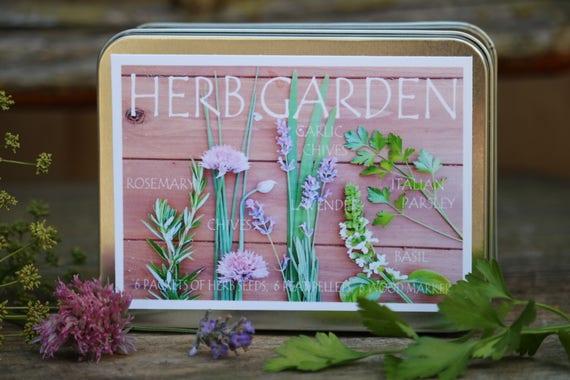 Herb Garden Kit 6 Packets Of Herb Seeds Gardening Gift