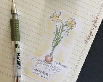 Flower Stickers; journal stickers; illustrated journal stickers, bullet journal stickers; planner stickers; hand drawn illustrations