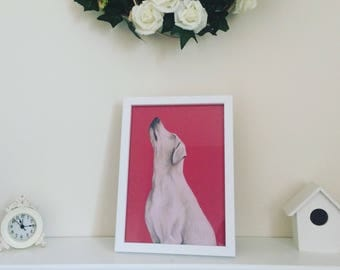 White Dog on Red - colour pencil drawing